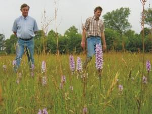Agrarisch natuur- en landschapsbeheer, subsidies, Staring Advies
