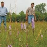 SCAN: Samen aan de slag voor een kansrijk en hoogwaardig agrarisch natuur- en landschapsbeheer